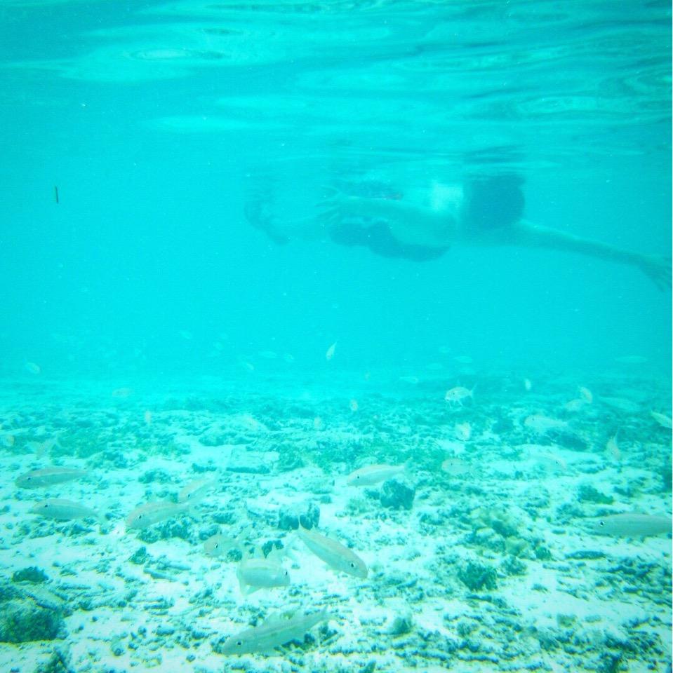 ボラボラの海