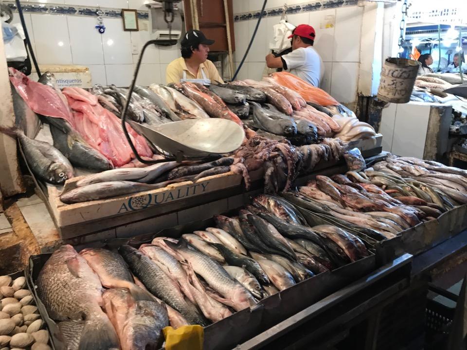 サンティアゴの市場