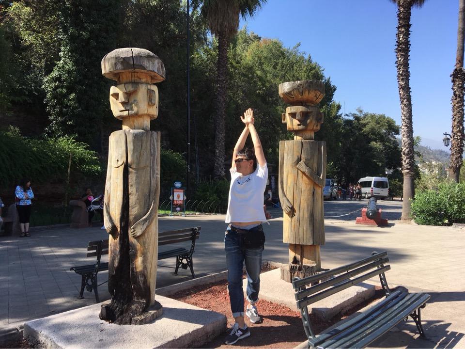 サンティアゴの木造