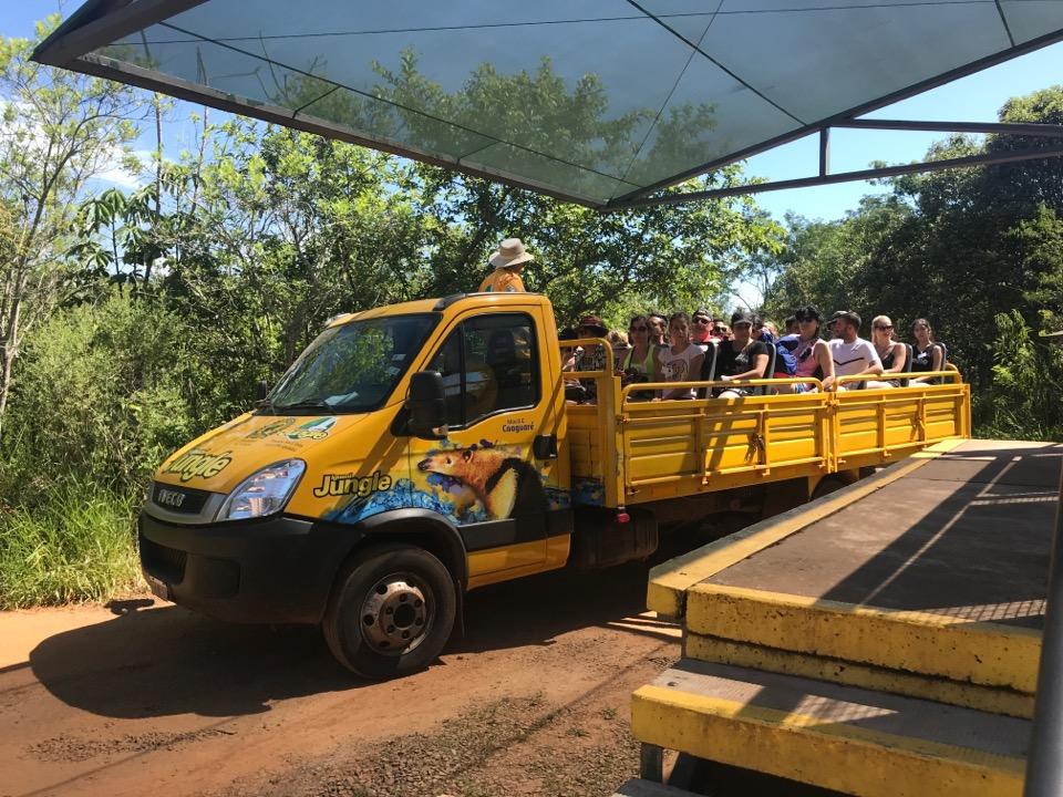 ジャングルツアーの車