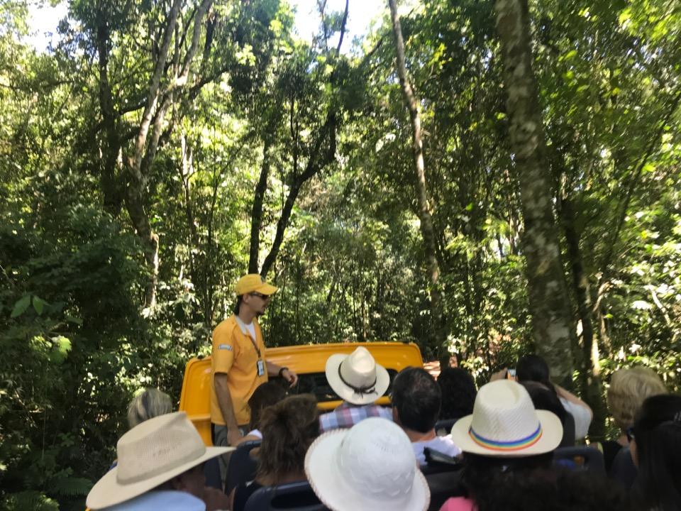 ジャングルツアーのガイド