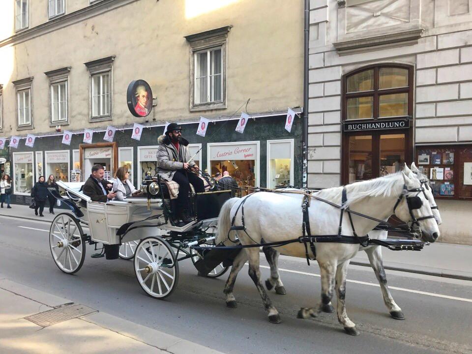 ウィーンの街と馬車