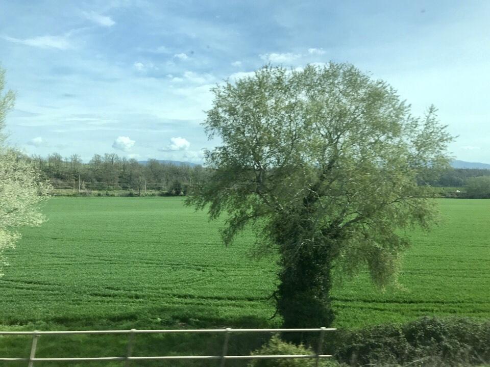 イタリアの電車からの風景