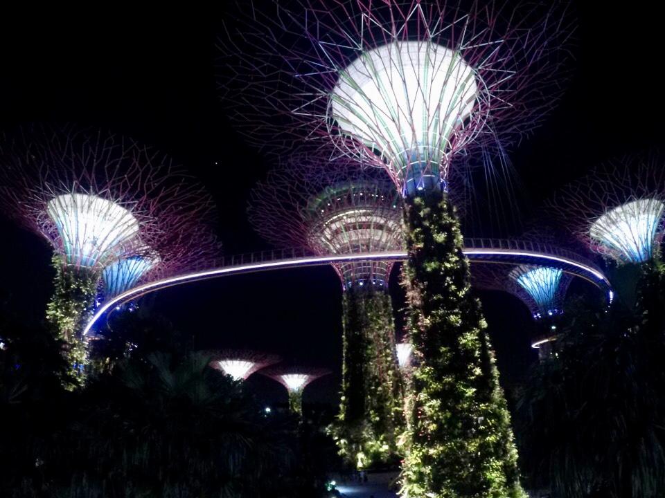 シンガポール